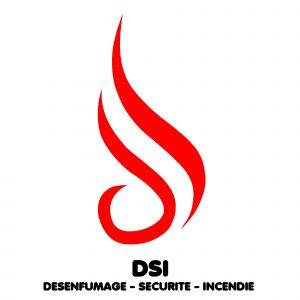 logo_dsi
