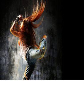 Danse Mcdanse77